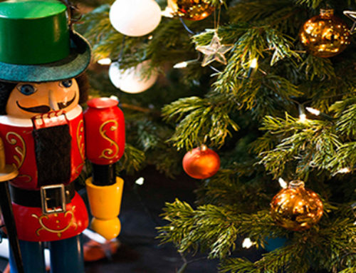 Schon wieder Weihnachten? von Anja Gumprecht