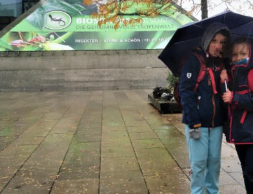 Ausflug Geschwisterkinder in die Biosphäre Potsdam